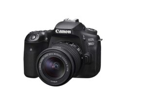 Best Hybrid Camera of 2020